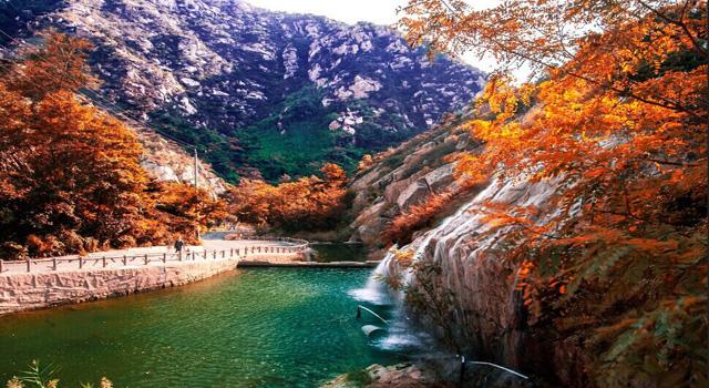 山东 丨 青岛茶山风景区,享受大自然的胜地